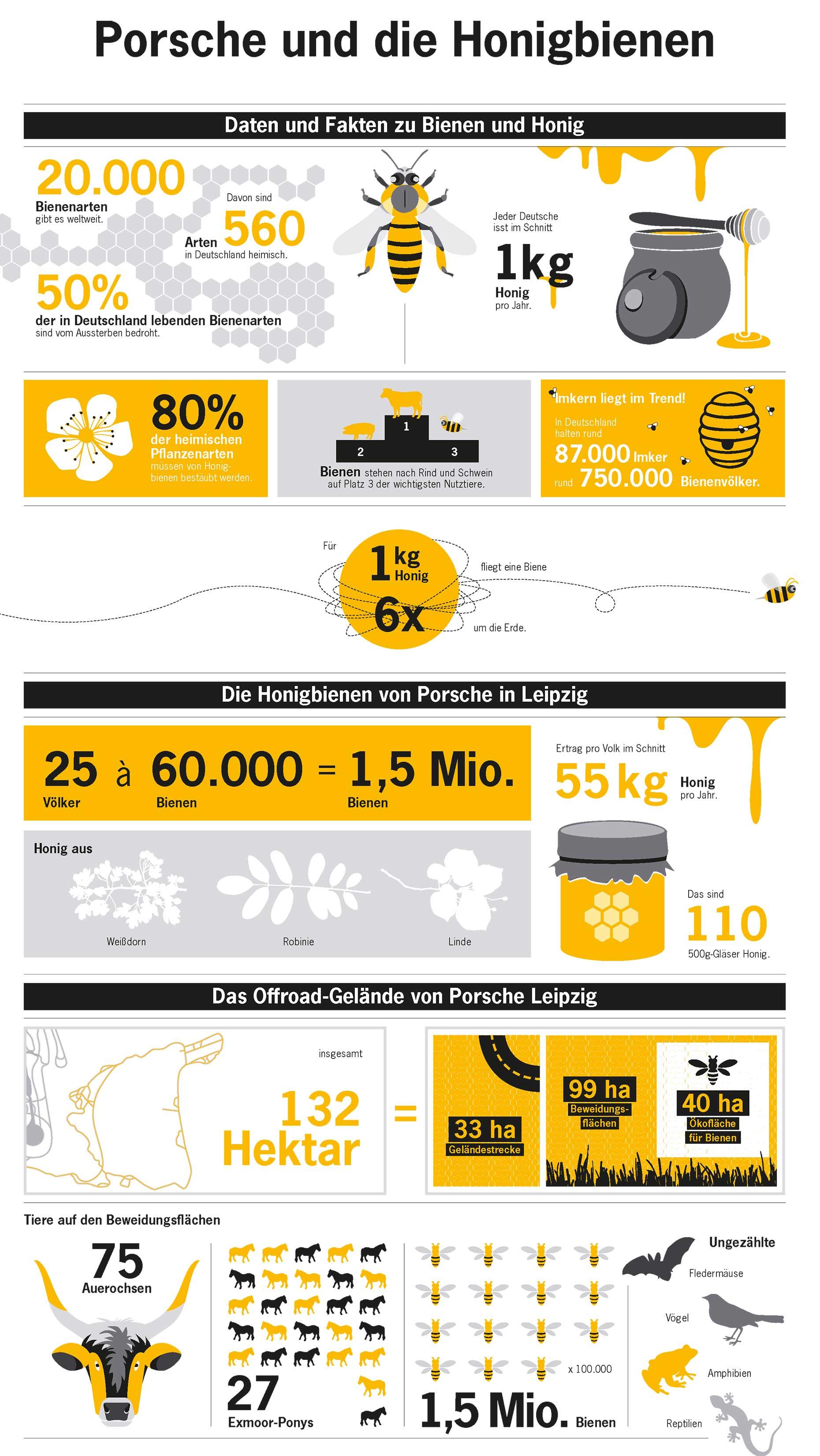 Porsche und die Honigbienen, Infografik, 2017, Porsche AG